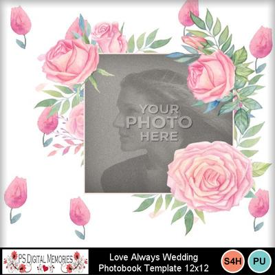 Love_always_wedding_pb5