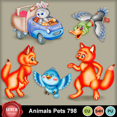 Animals_pets_798