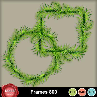 Frames800