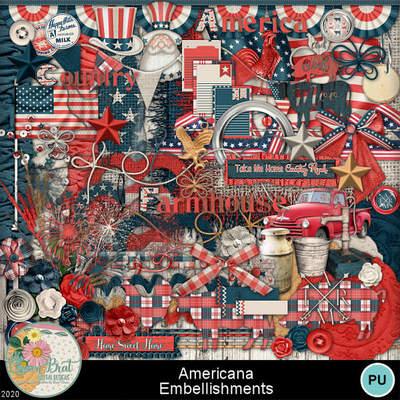 Americana_embellishments1-1