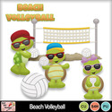 Beach_volleyball_preview_small