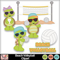 Beach_volleyball_clipart_preview_small