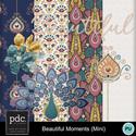 Pdc_mm_beautifulmoments_mini_web_small