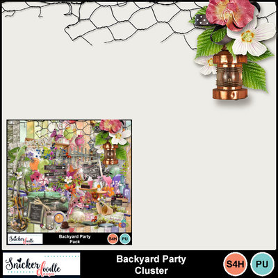 Backyard-party-pack-1