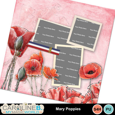 Mary-poppies_qp01