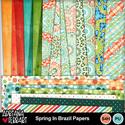 Springinbrazilpapers-1_small