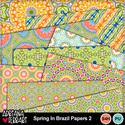 Springinbrazilpapers-2-1_small