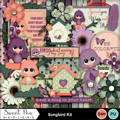 Spd_songbird_kit