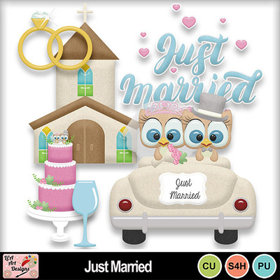 Just_married_preview