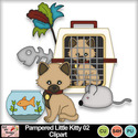Pampered_little_kitty_02_clipart_preview_small