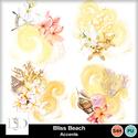 Dsd_blissbeach_acc_small