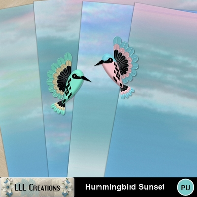 Hummingbird_sunset-01
