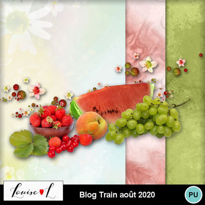 Louisel_blog_train_aout2020_preview