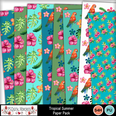 Tropical_summer_paper_1