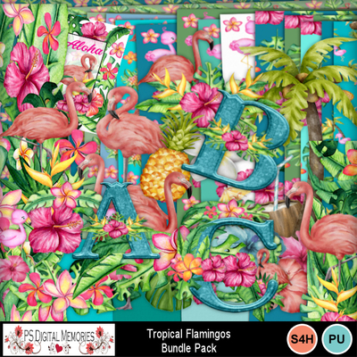 Tropical_flamingos_1