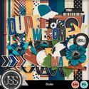 Dude_kit_small