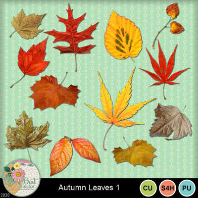 Autumnleaves1-1