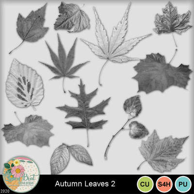 Autumnleaves2-1