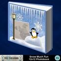 Snow_much_fun_12x12_photobook-001a_small