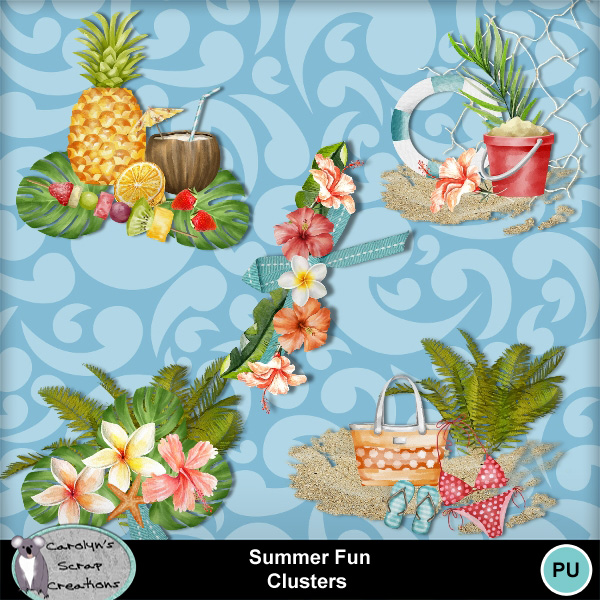 Csc_summer_fun_wi_clusters_