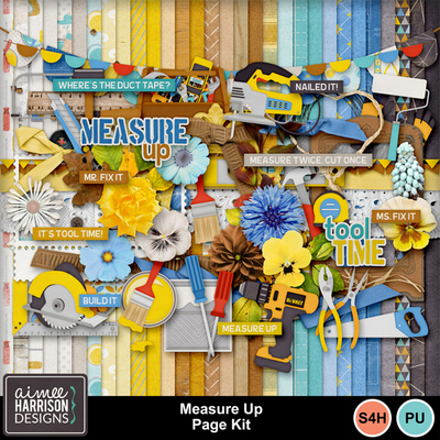 Aimeeh_measureup_kit