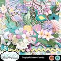 Tropical_dream_combo_01_small