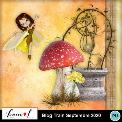 Louisel_blog_train_sept2020_preview