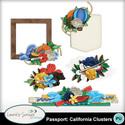 Mm_ls_passportcalifornia_clusters_small