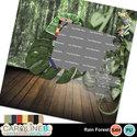 Rainforest_qp06_small