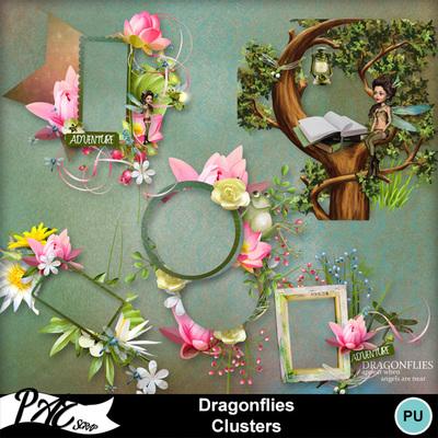 Patsscrap_dragonflies_pv_clusters