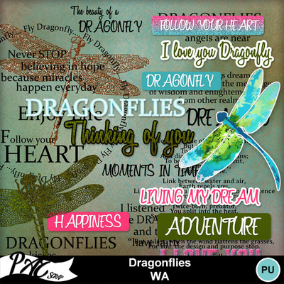 Patsscrap_dragonflies_pv_wa