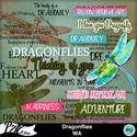 Patsscrap_dragonflies_pv_wa_small