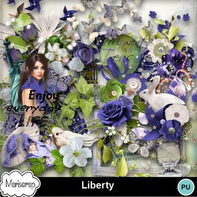Msp_liberty_pvmms