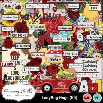 Mc-ladybug_kit-web