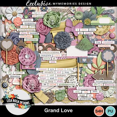 Web_lisarosadesigns_grandlove_elements