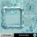 Summer_aqua-01_small
