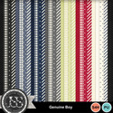 Genuine_boy_pattern_papers_small