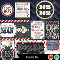Genuine_boy_pocket_scrap_cards_small