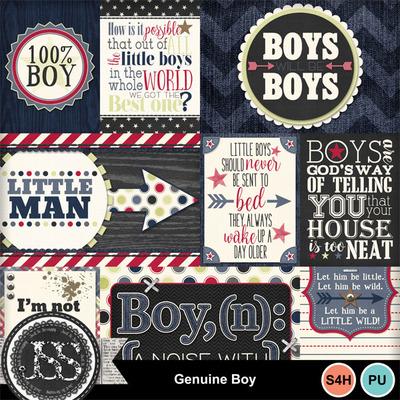 Genuine_boy_pocket_scrap_cards