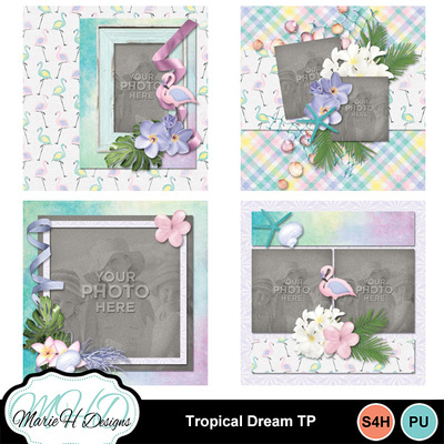 Tropical_dream_tp_01