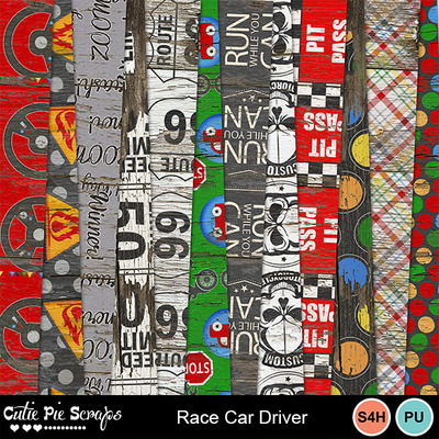 Racecardriver11