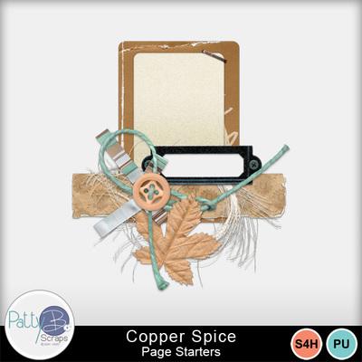 Pbs_copper_spice_cl1_sample