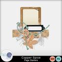 Pbs_copper_spice_cl1_sample_small