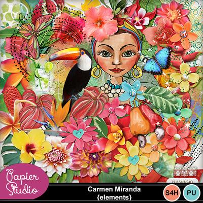 Carmenmiranda_elements