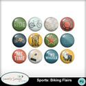 Mm_ls_sportsbikingflairs_small