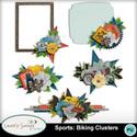 Mm_ls_sportsbikingclusters_small