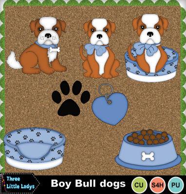 Boy_bull_dogs-tll