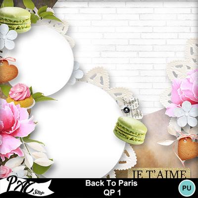 Patsscrap_back_to_paris_pv_qp1