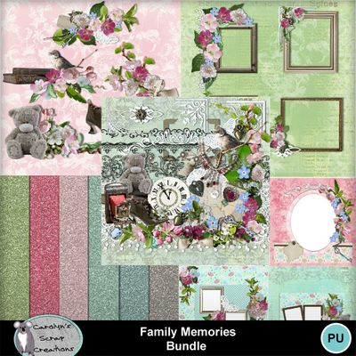 Csc_family_memories_bundle_wi