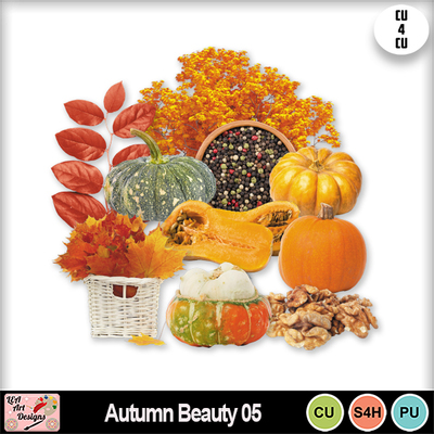 Autumn_beauty_05_preview